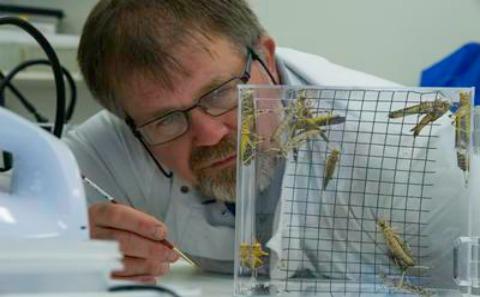 Invertebrate Facility
