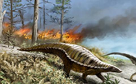 Dinosaurs in the tropics