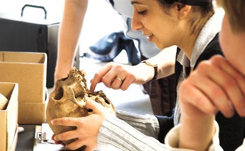 BA Archaeology