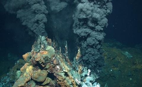 Marine Life Public Talks