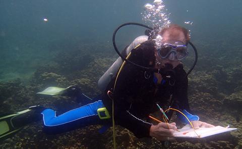 Prof Wiedenmann diving
