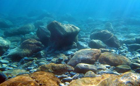 Photo showing sea floor with sand and rocks