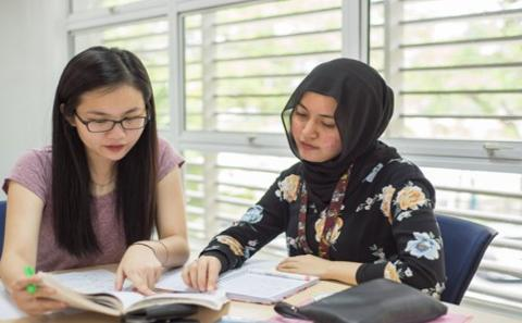 Study Year Abroad with English