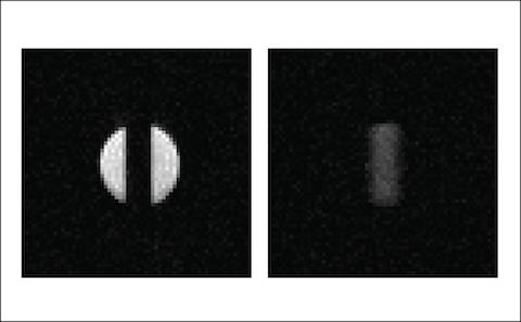 MRI image of singlet bearing molecules in a 10mm tube