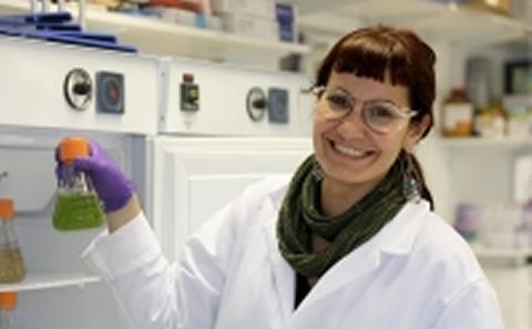 Dr Nefeli Tsaloglou