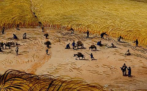 Slaves in field