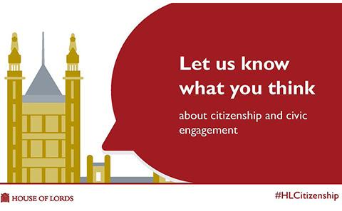 Citizenship Consultation