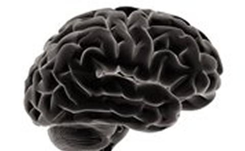 Dark image of a human brain