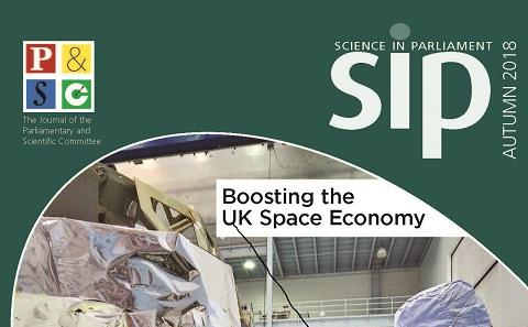 Cover of SIP journal