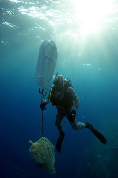A diver lifts an amphora to the surface. Credit: Vasilis Mentogianis