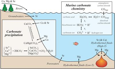 The principal reactions governing carbonate precipitation in the oceans, and how this interacts with the marine Mg, Ca and Sr cycles. (Source: C.R. Pearce)