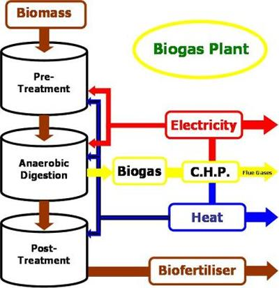 Biomass to energy schematic
