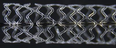 The ArterioSorbTM biodegradable scaffold