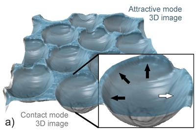 trapped in nano sized dimples. The blue layer is the profile of the bubble, the grey is the dimple.