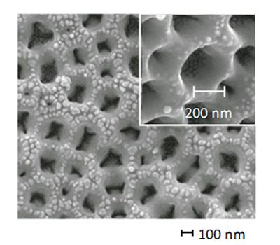 Gold coated titanium nanotubes produced by anodisation used for the direct oxidation of borohydride ions