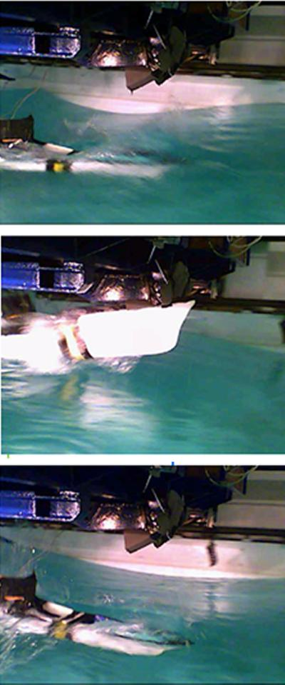 Hydroelastic ship model testing in freak waves