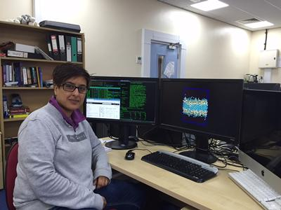 'The main theme to the research in my group is the use of computational techniques to explore the structure-function relationships of a range of biological molecules and systems.'