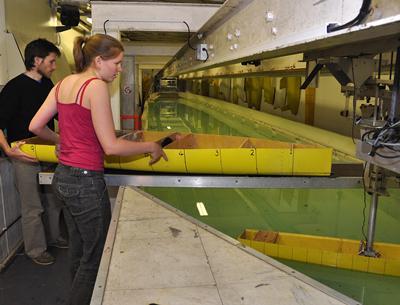 Towing tank testing
