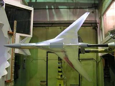Wind-tunnel testings of the TCR model in TsAGI (Russia)