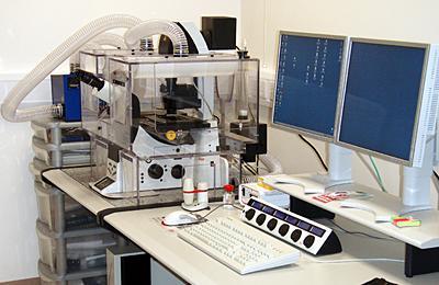 Leica TCS-SP5 Confocal Microscope