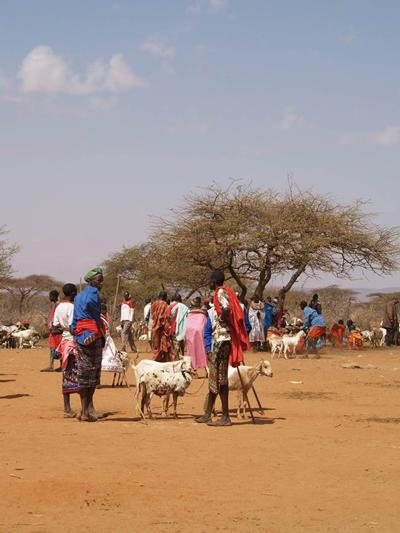We are working with communities in Northern Kenya to conserve wildlife and improve livelihoods