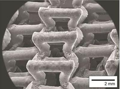 The cellular microstructure of a 3D printed auxetic form