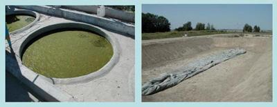 Experimental algal ponds in Almaty, Kazakhstan