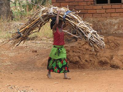 Rural women in Malawi spend many hours collecting firewood