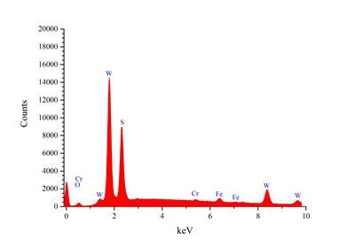 EDS spectra of WSC coating