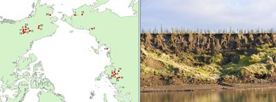 Study locations (right: a photo of site 8 in NE Siberia)