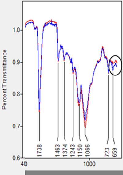 Fourier Transform Infrared Spectroscopy (FT‐IR) showing difference (black circle) in specific molecular structure between aged (red) and unaged (blue) linseed.