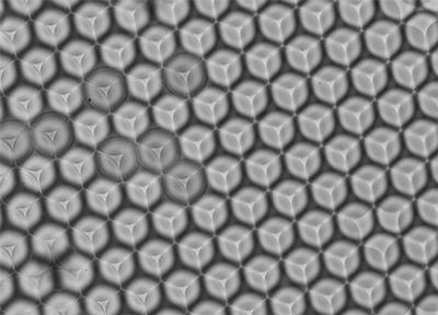 Protein Crystallisation
