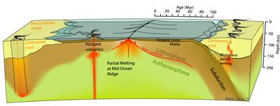 Scaled illustration of the major processes that help drive plate tectonics