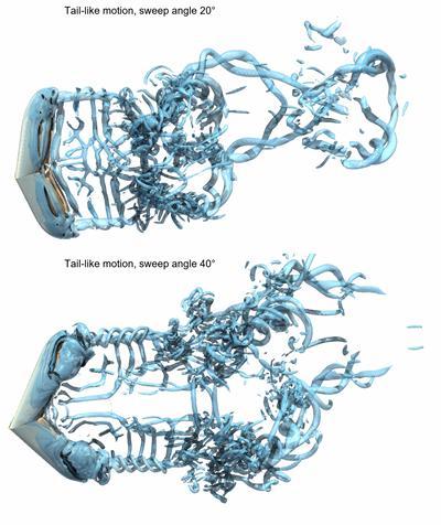 Figure 2. 3D flow in swept-back finite foils