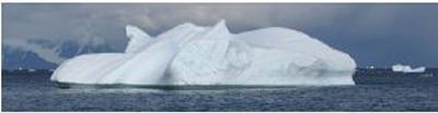 Iceberg (Source: E Storey)