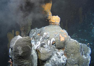 Hydrothermal vent at the sea floor