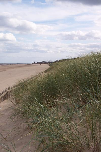 Dune management at Mablethorpe, UK