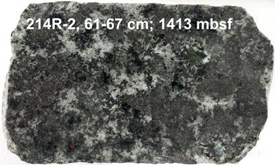 Hydrothermally altered gabbro from IODP Hole 1256D.