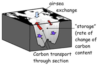 The air-sea flux is related to the net rate of increase of carbon in the basin as a whole (storage), minus the net transport into the region as measured on a hydrographic section.