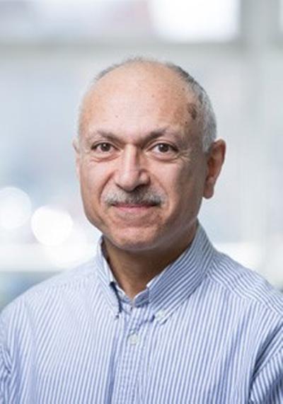 Dr Reza Zamani