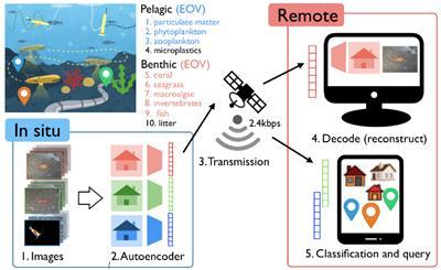 Remote Awareness