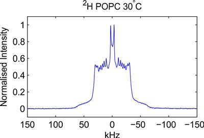 The 2H solid state NMR spectrum of lipids in a vesicle