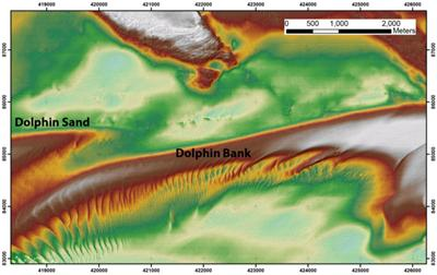 Dolphin Bank bathymetry