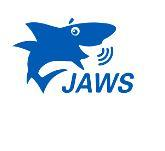 JAWS Screens Reader