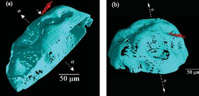 Carbon nanotube-reinforced acrylic bone cement