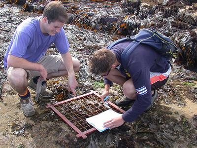 Marine Biology fieldwork