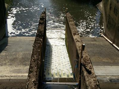 picture of ecohydraulic weir
