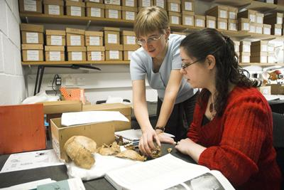 Undergraduate study in one of the archaeology laboratories