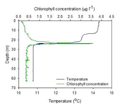 Subsurface chlorophyll thin layer observed offshore Falmouth in 2013