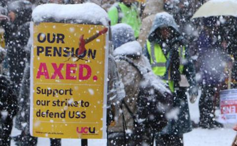 Snowy Picket
